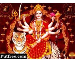 Love Specialist Astrologer Pt. Amit Shastri Ji +91-9828873011
