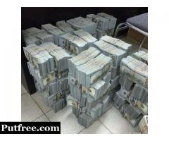 WE SUPPLY HIGH  QUALITY UNDETECTABLE BANKNOTES AND SSD SOLUTION.